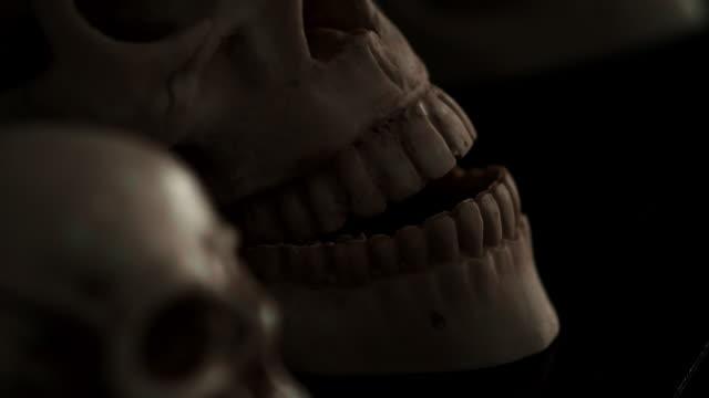 human skull - paranormal stock videos & royalty-free footage
