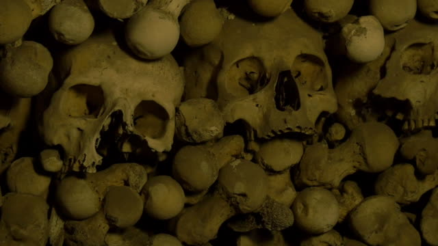 human skulls and bones in an ossuary - skull stock videos and b-roll footage