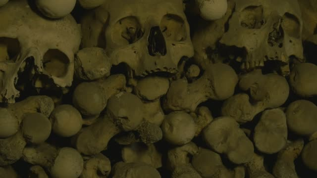 human skulls and bones in an ossuary - bone stock videos & royalty-free footage