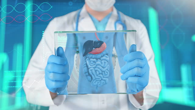 human stomach medical exam - 4k resolution - pancreas stock videos & royalty-free footage
