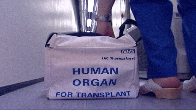 human tissue act changes laws on organ transplantation tx london back view of hospital worker picking up bag labelled 'human organ for transplant'... - human tissue stock videos & royalty-free footage