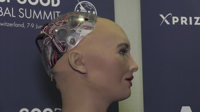 A humanoid robot called Sophie who can smile mischievously bat her eyelids and tell a joke is the main attraction at a UN hosted conference in Geneva...