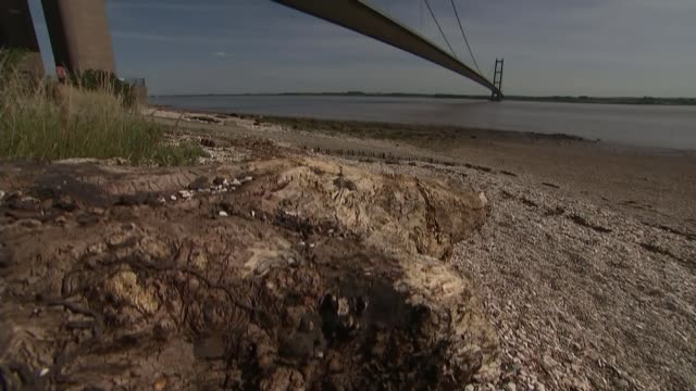 Humber Bridge given listed status by Historic England ENGLAND KingstonuponHull Humber Bridge seen from shore
