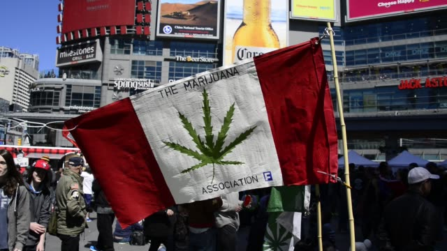 Hundreds attend Toronto 420 pot rally at YongeDundas Square Organizers say that this week annual pot protest will be transformed into a celebration...