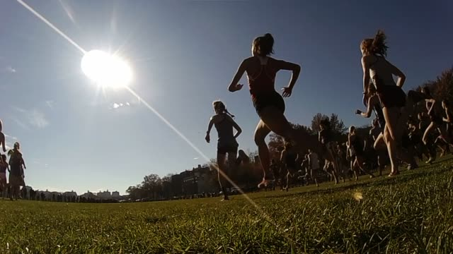 Hundreds head away from camera into sun and across grass field in Van Cortlandt Park in the Bronx NYC