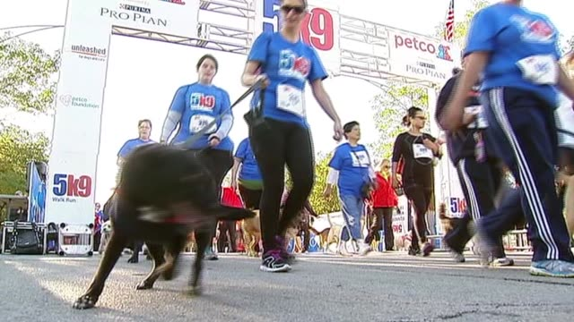 Hundreds of dogs and their owners participated in the 5K9 Walk to raise money for Paws Chicago Participants And Their Dogs At Starting Line on...