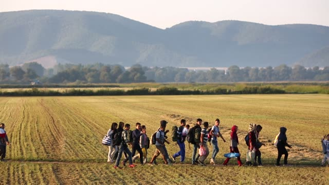 hundreds of families walk the final few kilometers through fields towards the macedonian border to have their papers processed before crossing on... - flüchtling stock-videos und b-roll-filmmaterial