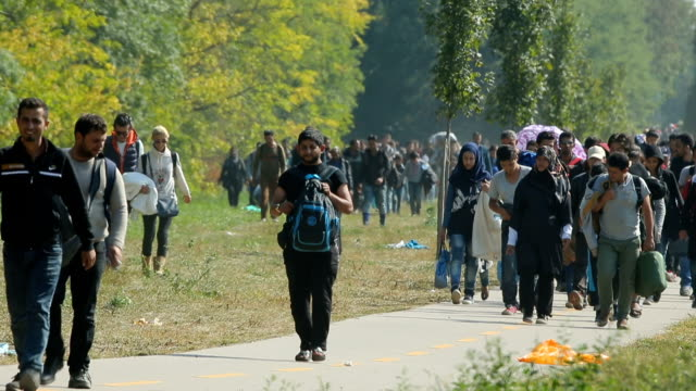 hundreds of migrants who arrived by train at hegyeshalom on the hungarian and austrian border walk the four kilometres into austria on september 23,... - traditionally austrian stock videos & royalty-free footage