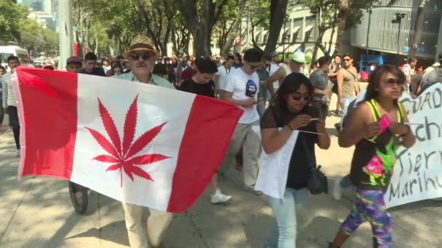 Hundreds of people in Mexico march in support of cannabis legalization on April 20 or 4/20 known as national weed appreciation day