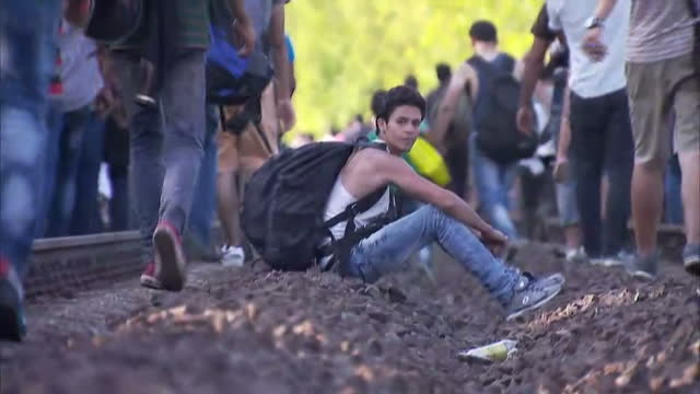 hundreds of refugees are tonight walking towards the hungarian border - after giving up on reaching western europe by train. the march, nearly half a... - ungersk kultur bildbanksvideor och videomaterial från bakom kulisserna