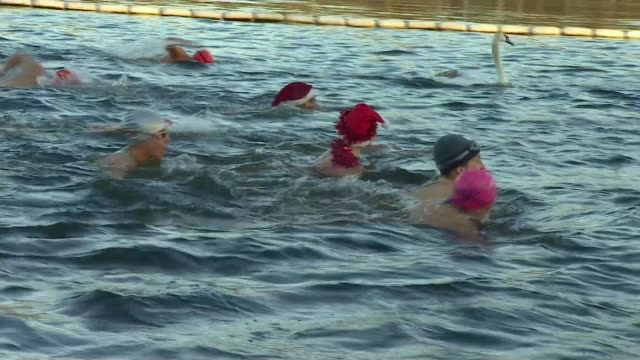 hundreds turn out for christmas day swim across the uk england london hyde park ext various of swimmers swimming in serpentine lake for traditional... - the serpentine london stock videos & royalty-free footage