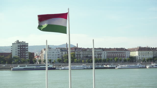 hungarian flag at budapest with danube on the background - 固定された点の映像素材/bロール