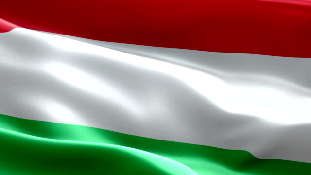 hungarian flag - eastern european culture stock videos and b-roll footage