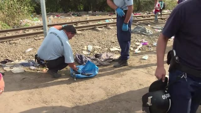 hungarian police close off the main crossing point for migrants entering from serbia - eastern european culture stock videos & royalty-free footage