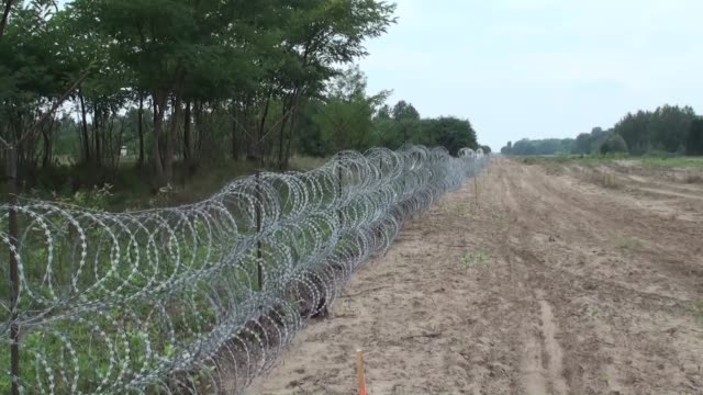 Hungarian security forces put wire fences on the Hungary Serbia border line to prevent illegal immigration in Hungary on August 24 2015