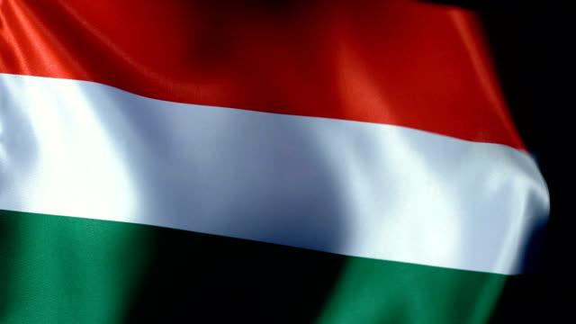 vídeos de stock, filmes e b-roll de flapping da bandeira de hungria - cultura húngara