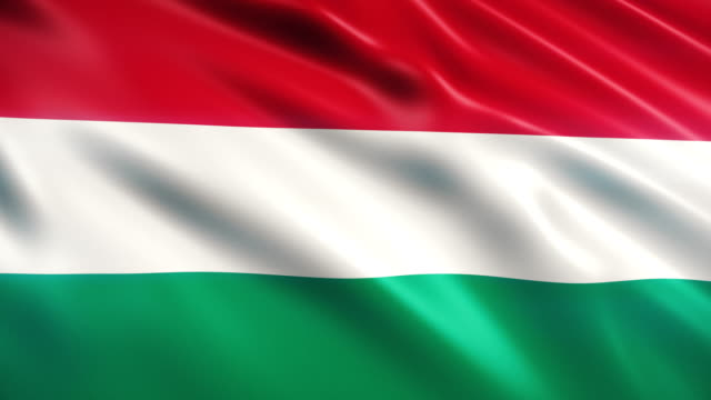 hungary flag - eastern european culture stock videos & royalty-free footage