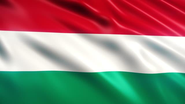 vidéos et rushes de drapeau de la hongrie - culture hongroise