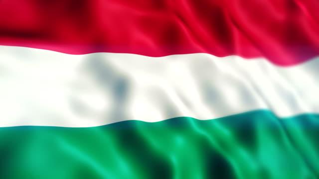 vídeos y material grabado en eventos de stock de bandera de hungría - cultura húngara