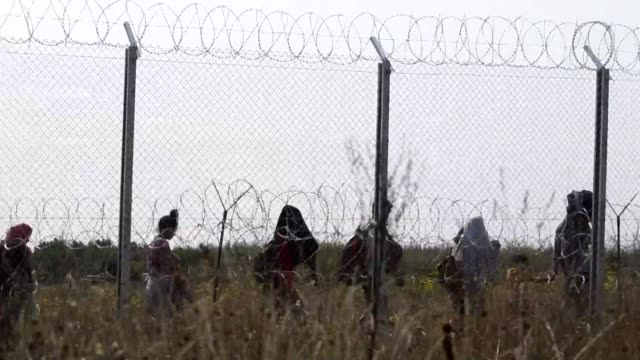 Hungary has started to build a migrant camp at Roszke near the border with Serbia as migrants continue to try and enter the country