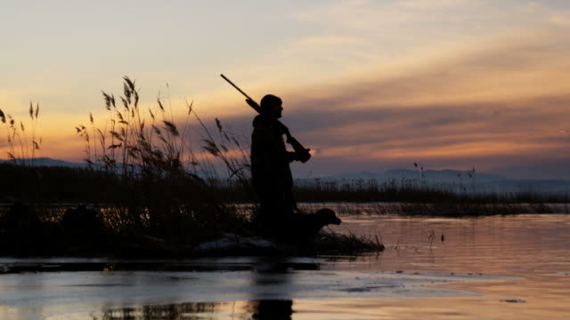 hunter and his dog on a pond - hunting sport stock videos & royalty-free footage