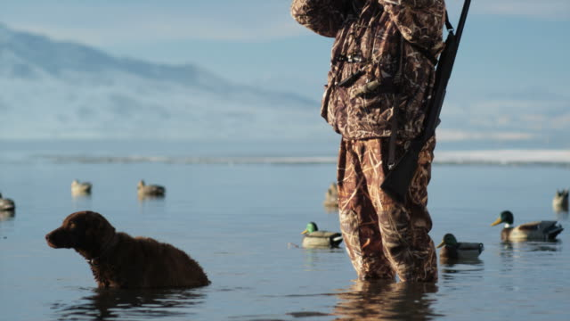 hunter and his dog wading in a duck pond