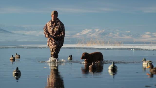 vídeos y material grabado en eventos de stock de hunter and his dog wading in a duck pond - caza
