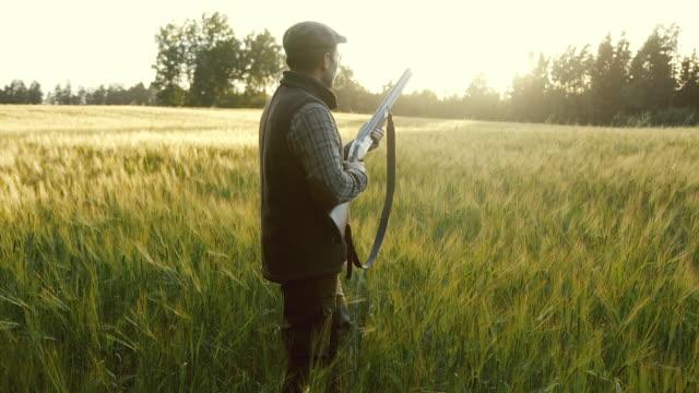 vidéos et rushes de hunter se prépare à tirer une arme à l'heure d'or - chasse aux oiseaux