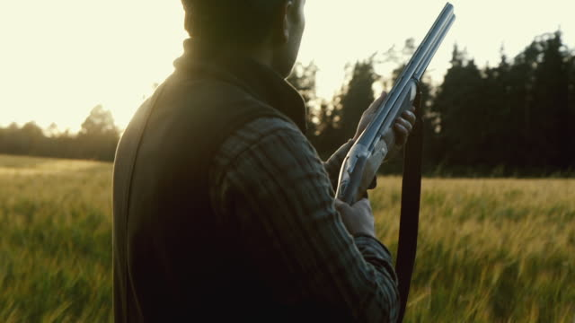 hunter gets ready to shoot a weapon at golden hour (slow motion) - hunting stock videos & royalty-free footage