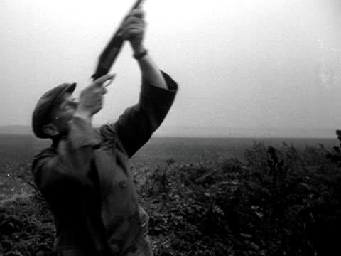 vidéos et rushes de a hunter shoots down a pheasant during a gun dog competition - type de chasse