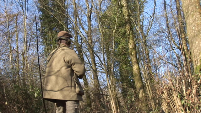vidéos et rushes de a hunter stands in a thicket with his rifle poised. - type de chasse