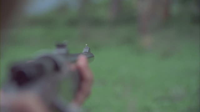 vidéos et rushes de a hunter takes aim at a leopard lying in the grasslands of africa. - fusil