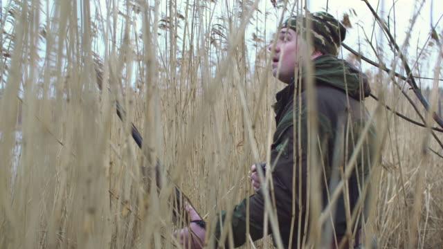 hunter - shotgun stock videos & royalty-free footage