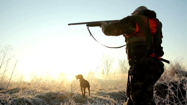 hunter - hunting sport stock videos & royalty-free footage