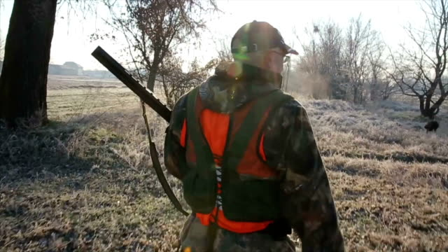 hunter walk through the field - hunting sport stock videos & royalty-free footage