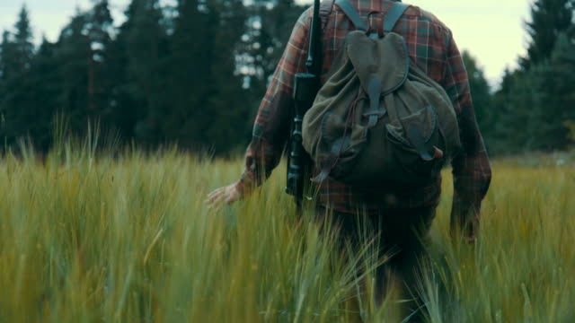 hunter walking on a field (slow motion) - forest stock videos & royalty-free footage