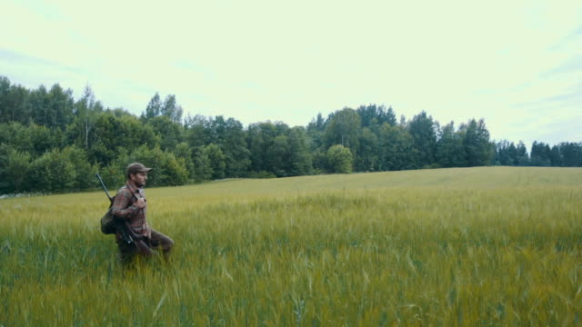 hunter walking on a field - hunting stock videos and b-roll footage