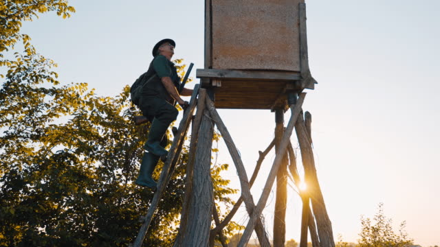 ws ts la hunter walking up hunting blind ladder - ladder stock videos & royalty-free footage