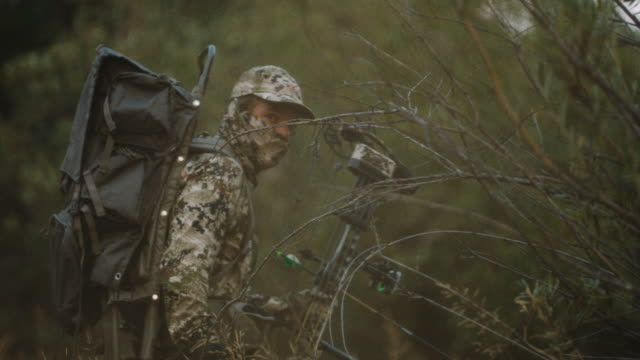 a hunter walks slowly as he stalks his animal, disappearing and revealing himself between trees and grass in front of the camera lens. - archery bow stock videos and b-roll footage