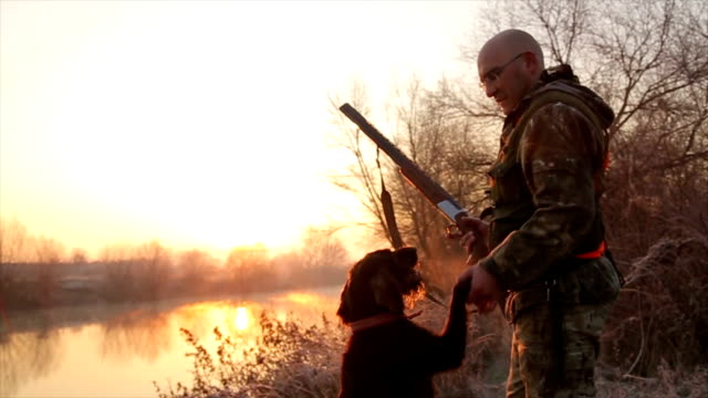 hunter with his german wirehaired pointer - hunting sport stock videos & royalty-free footage