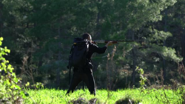 hunter with rifle - hunting sport stock videos & royalty-free footage