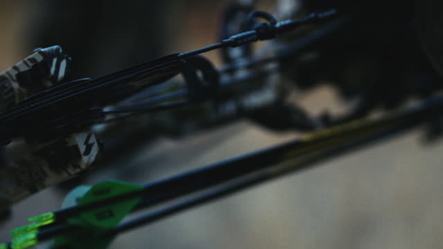 a hunter's bow sits closeup, showing his arrows, the cams and the beauty of a high quality compound bow. this shot evokes emotion due to the shallow depth of field. it can symbolize adventure, fright, power, etc. - bow and arrow stock videos and b-roll footage