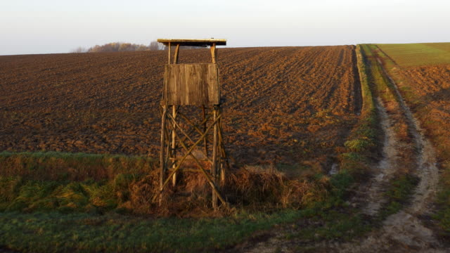 AERIAL Hunting lookout tower at the edge of a field
