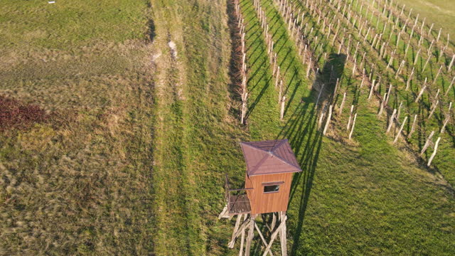hunting observation tower on meadow by vineyards and agricultural fields - tower stock videos & royalty-free footage