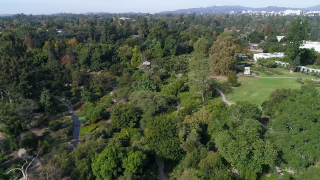 huntington library and botanical gardens - pasadena california stock videos & royalty-free footage