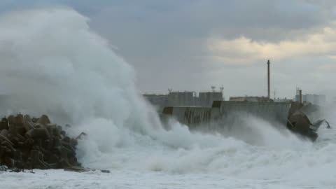hurricane breakwater at the port - coastal feature stock videos & royalty-free footage