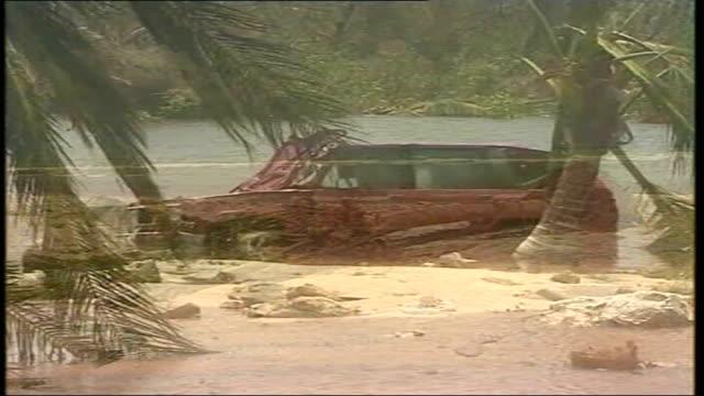 vidéos et rushes de hurricane dean hits mexico; downed tree lying on beach damaged car abandoned on beach - amérique latine