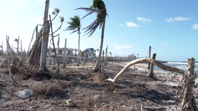 Hurricane Devastated Coastline Damage Typhoon Haiyan