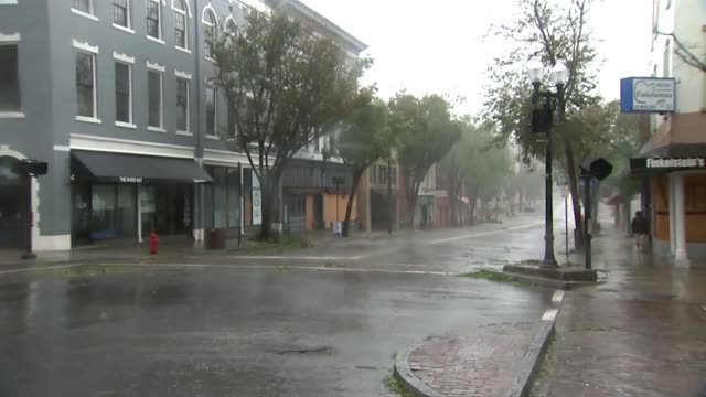 vídeos de stock, filmes e b-roll de at least 5 people killed usa north carolina wilmington street scene as rain falls back view of man along pavement fallen trees on pavement - wilmington carolina do norte