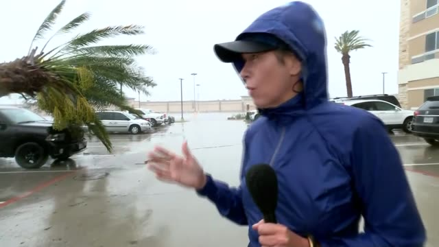Texas Victoria EXT Reporter to camera Fallen tree Fallen lamppost lying on ground Car along flooded road Sign 'Stop' with floodwater in background